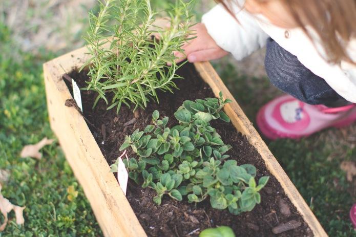 Gardening-8