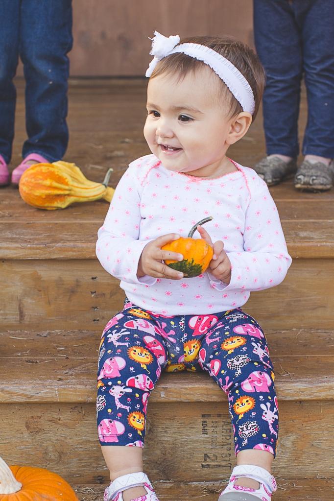 Pumpkin Patch-6