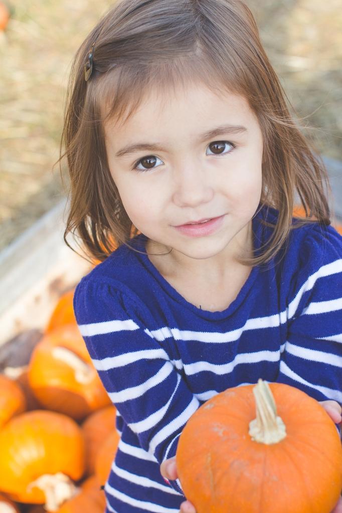 Pumpkin Patch-8