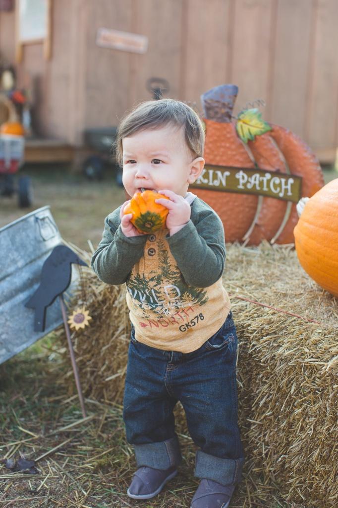PumpkinPatchWP-15