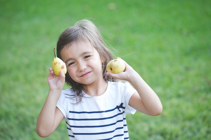 Picking Pears-10