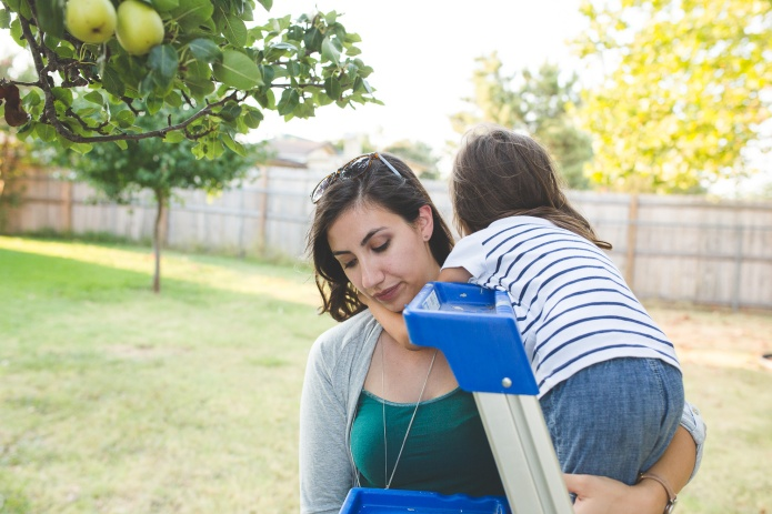 Picking Pears-34