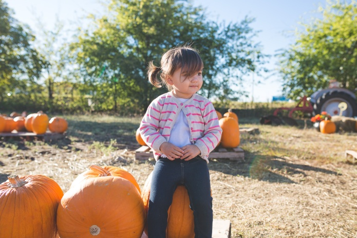 Pumpkin Patch 2015-10