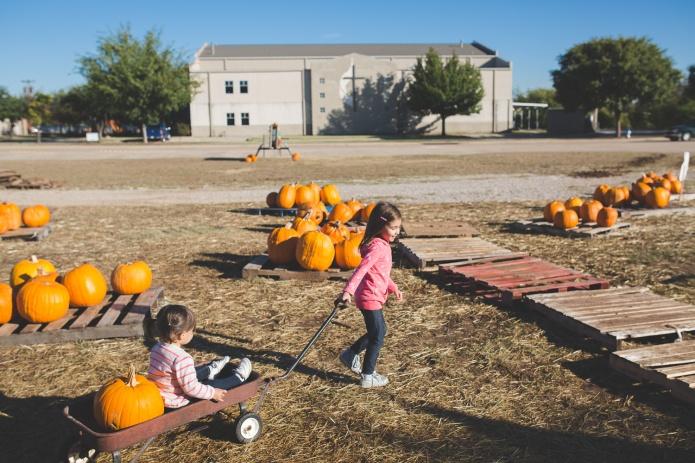 Pumpkin Patch 2015-13