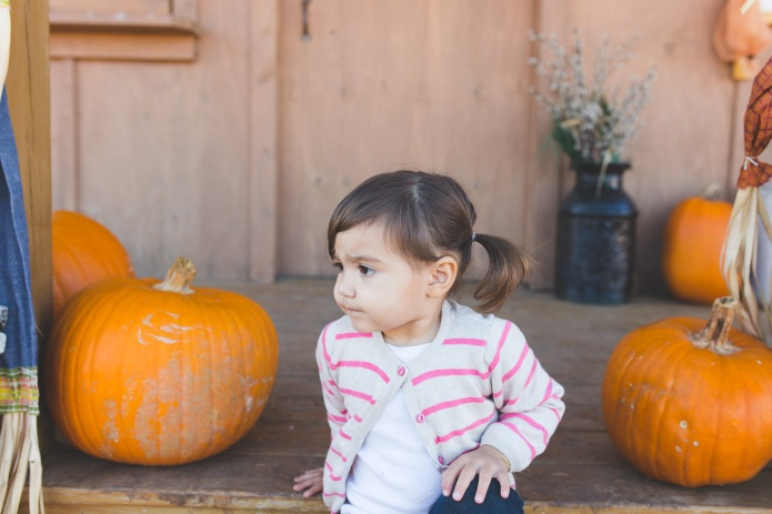 Pumpkin Patch 2015-19