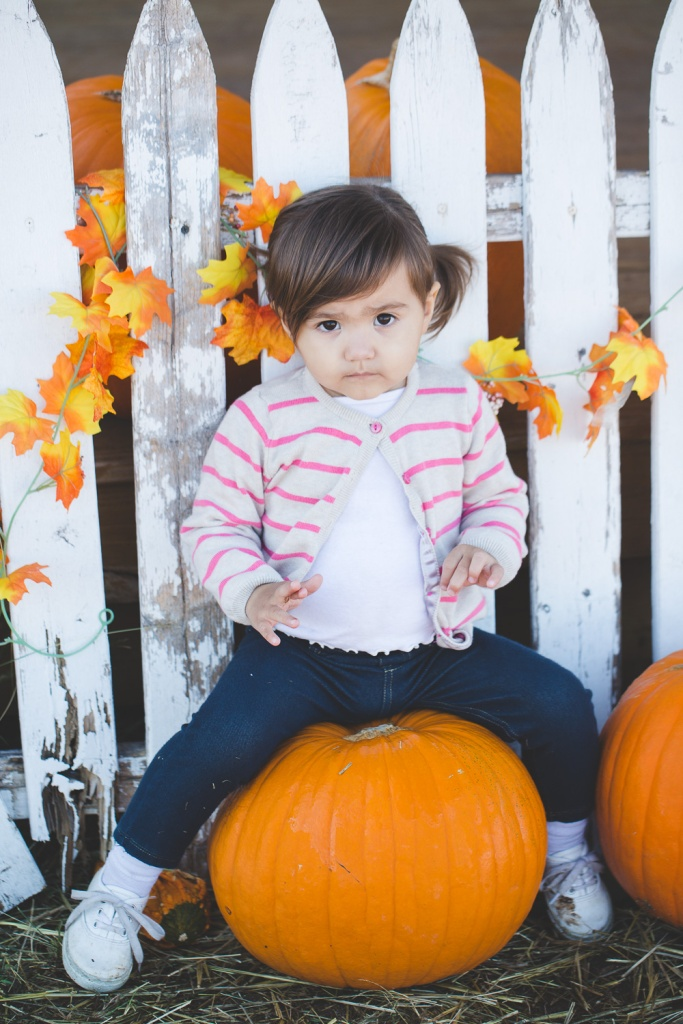 Pumpkin Patch 2015-25