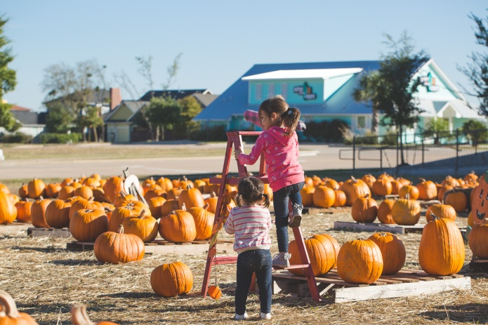 Pumpkin Patch 2015-36